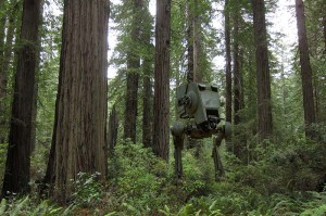 Redwoodforest AT-ST